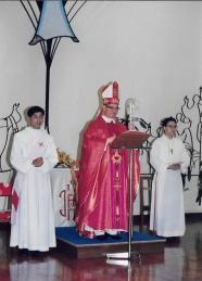 Cardinal Wu